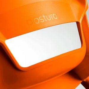 Postura Plus authentication logo