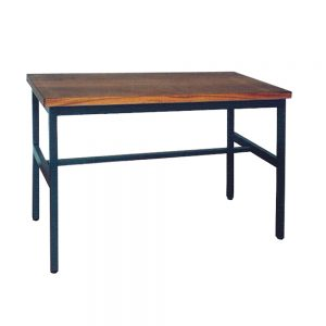 Science Table - Metal Frame